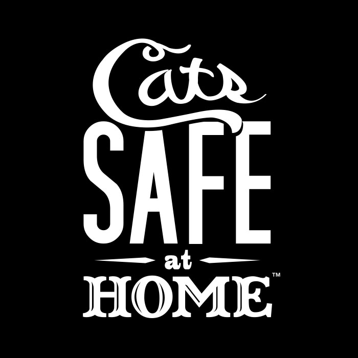 Cats Safe At Home