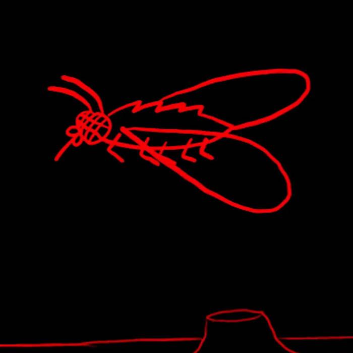 Weird Weird Head Moving Insect